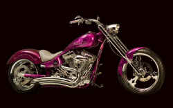 Wicked Women Choppers - The Tequila Rose